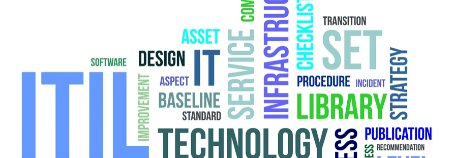 Are you kidding me? It happended again?! IT Management and the need for IT Standards – Response