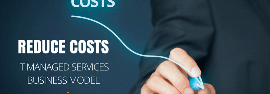 Whoa! Do we really need to do that? Reducing IT costs through managed services.