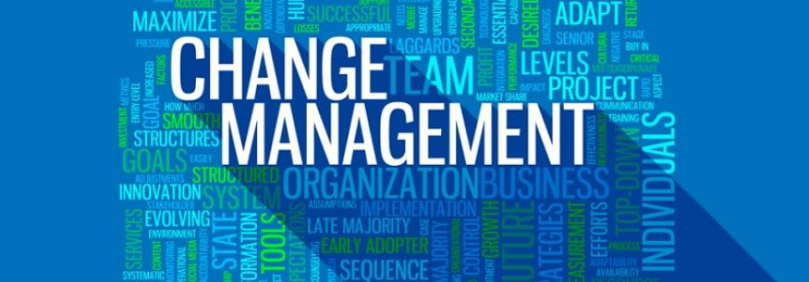 Dissertation on change management